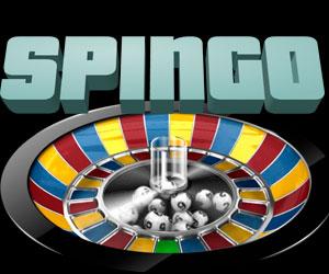 Bingo Spingo