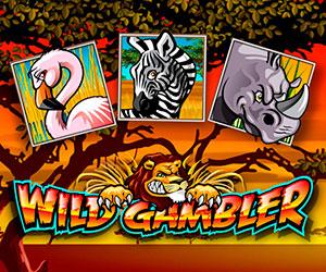Slots Wild Gambler