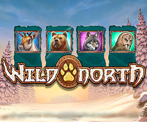 Slots Wild North