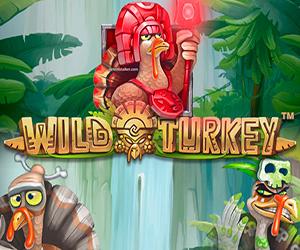 Slots Wild Turkey